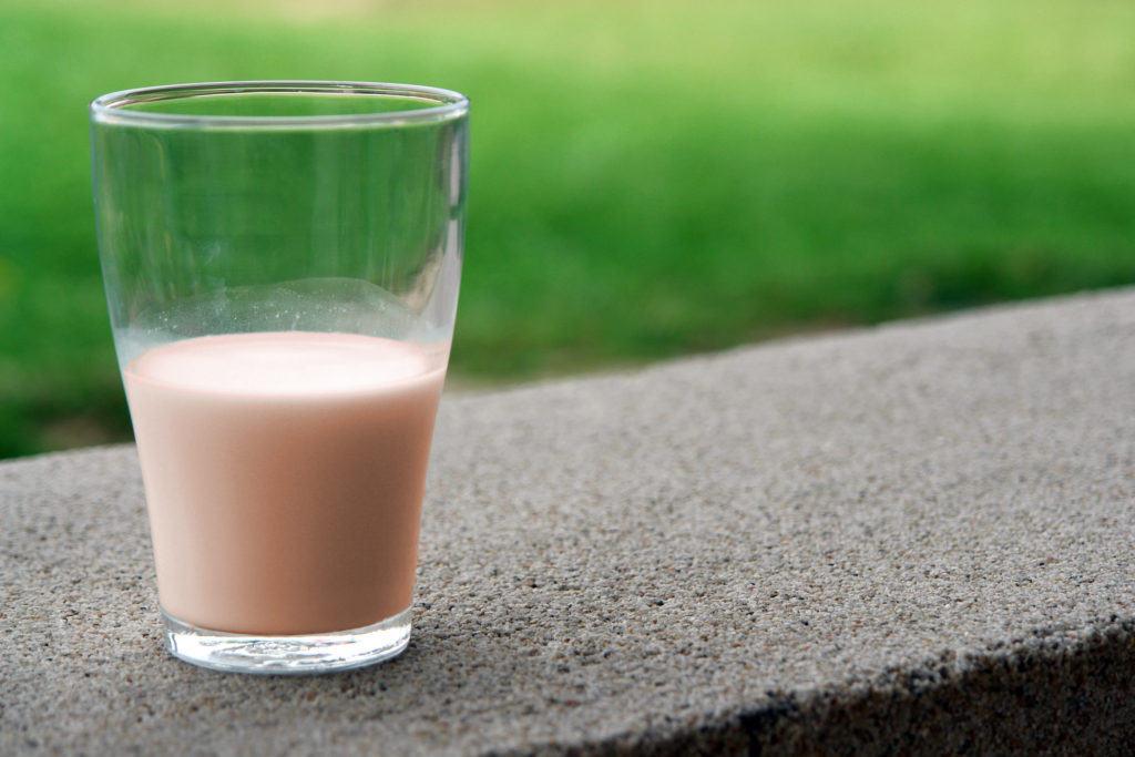 Optimum Nutrition Gold Standard 100% Whey Protein Powder Extreme Milk Chocolate