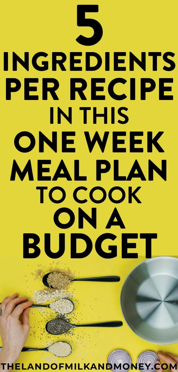 one week meal plan with easy 5 ingredient recipes to save money
