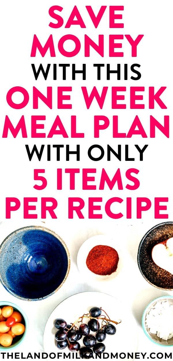 Yum! This weekly meal plan is great for beginners like me with tips for saving money by staying on a budget. These easy recipes are so healthy for my family too - there are even vegetarian dinners for the week which are great for weight loss! These ideas for a one week meal plan are so cheap, I might actually stick with frugal living this time by continuing to food prep!