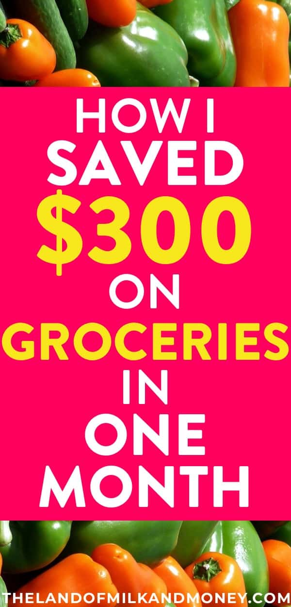 These tips for buying groceries on a budget are amazing! I SO needed some ideas to save money that let me really embrace frugal living, so the fact that my family can still eat healthy food with these hacks is incredible! #foodie #savemoney #money #download #financialfreedom #personalfinance #debt #budget #frugal #hacks #tips #inspiration #save #mealprep #mealplan #organization #healthy #healthyfood #healthylifestyle #healthyeating