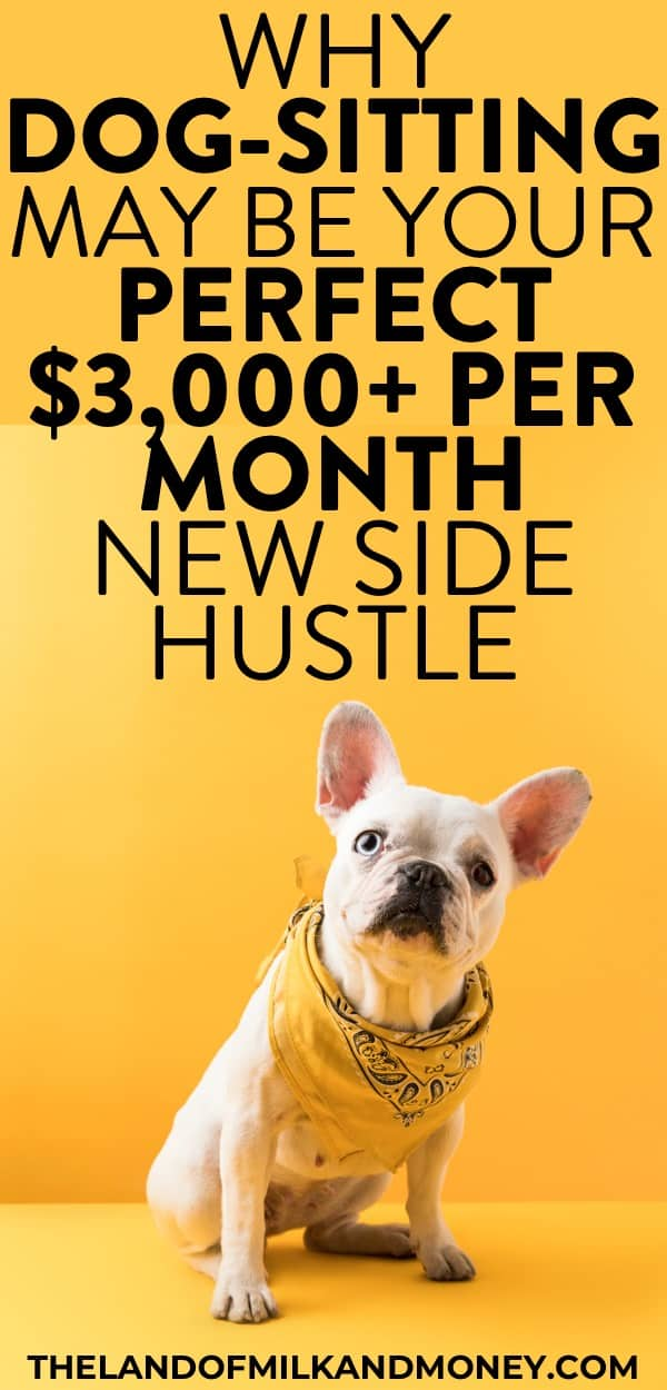 I always need new side hustle ideas so these easy ways to make money to have extra money on the side are SO cute! Seeing how to make money with dogs and cats is super useful, especially as I can easily make money dog walking or make money pet sitting or pet grooming. You can even make money off your dog! We money makers always need new money making ideas to earn money on the side and these are super easy side jobs to make money to help my money management by helping with saving money #sidehustle